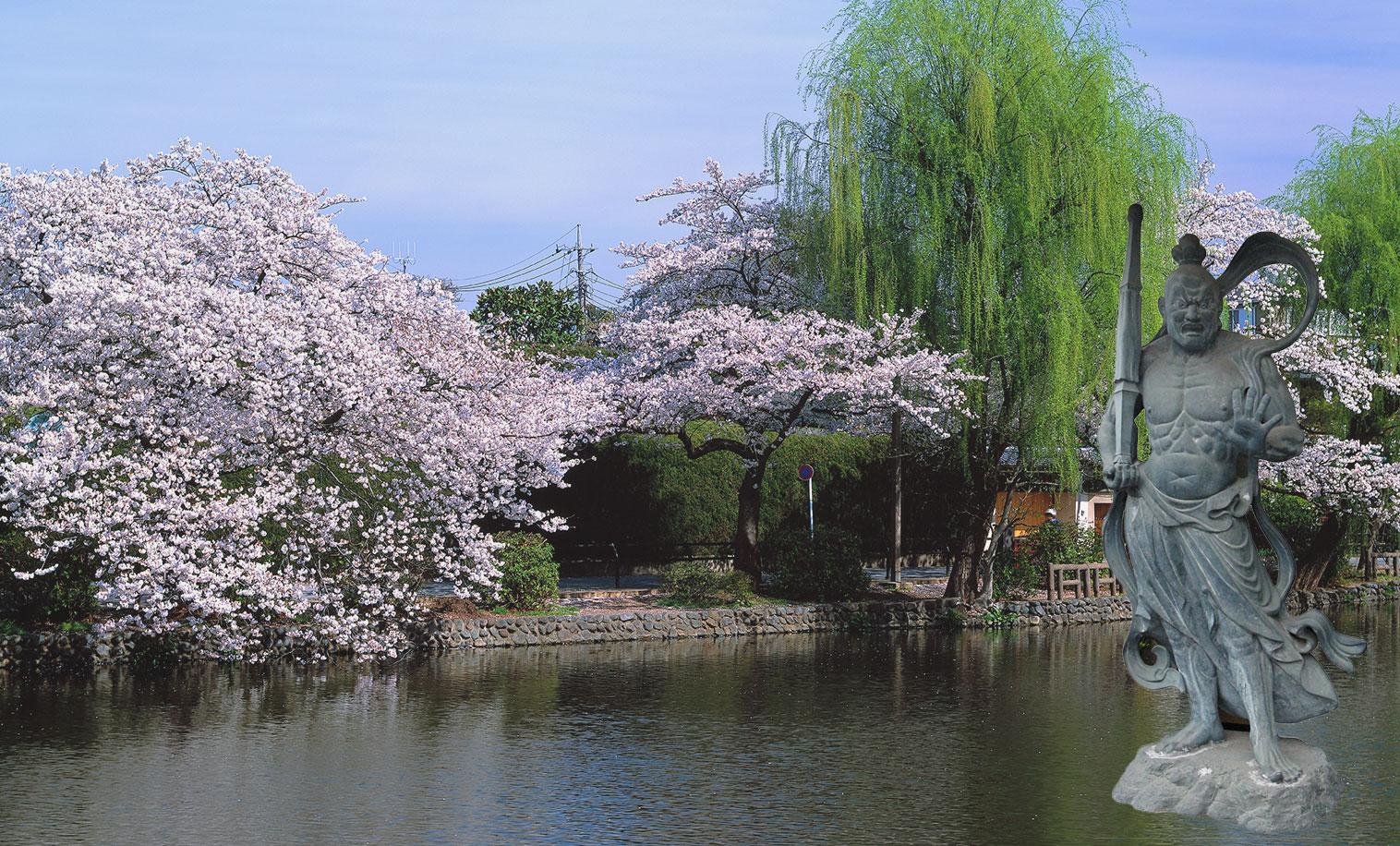 40年の経験と実績 OSUMI KOGYO CO.,LTD.